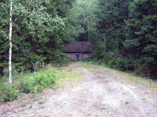 Шведский бункер Vargen