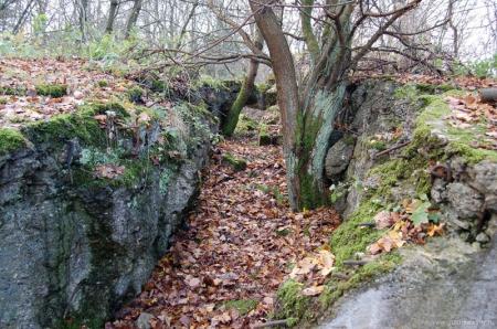 Бункер Гитлера «Гнездо в скалах» (Felsennest)