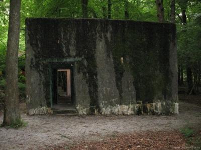 Бункер Гитлера «Волчий овраг I» (Wolfsschlucht I)