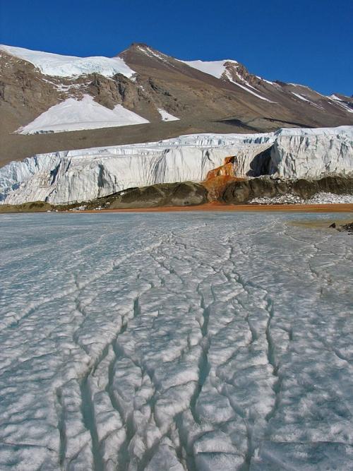 «Кровавый водопад» в Антарктиде