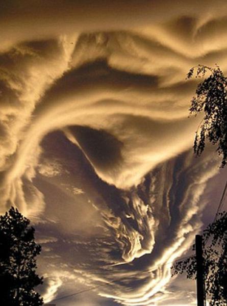 облака «Асператус»