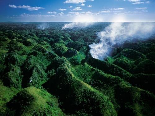 Вырубка лесов в национальном парке Лос Haitises , Доминиканская Республика