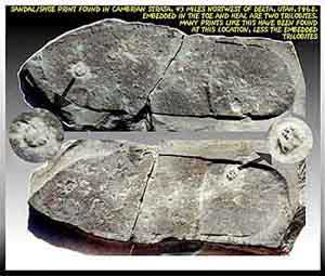 Юта: отпечаток следа обутой ноги в глинистом сланце