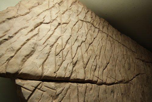 Карта мира древней цивилизации